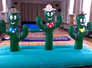 big_86_cactus-hoopla-1-_l